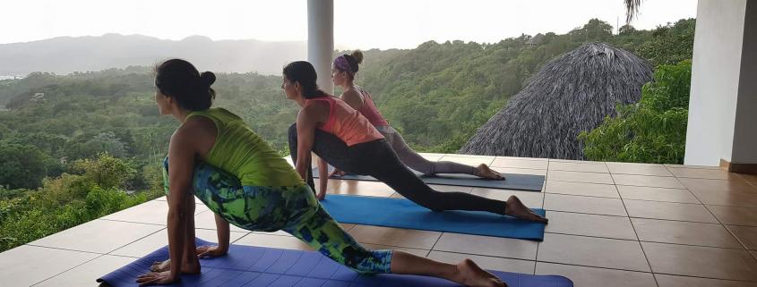 Hatha Yoga Yoga Asanas Yoga Meets You Yoga Urlaub Yoga Kurse Yoga Ferien Hatha Yoga